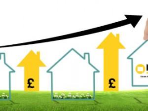 MOV8 Property Market Update January 2015