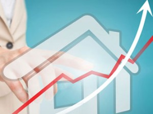 MOV8 Property Market Update February 2015