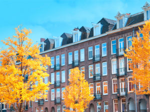 Eight Tips For Property Selling in Autumn